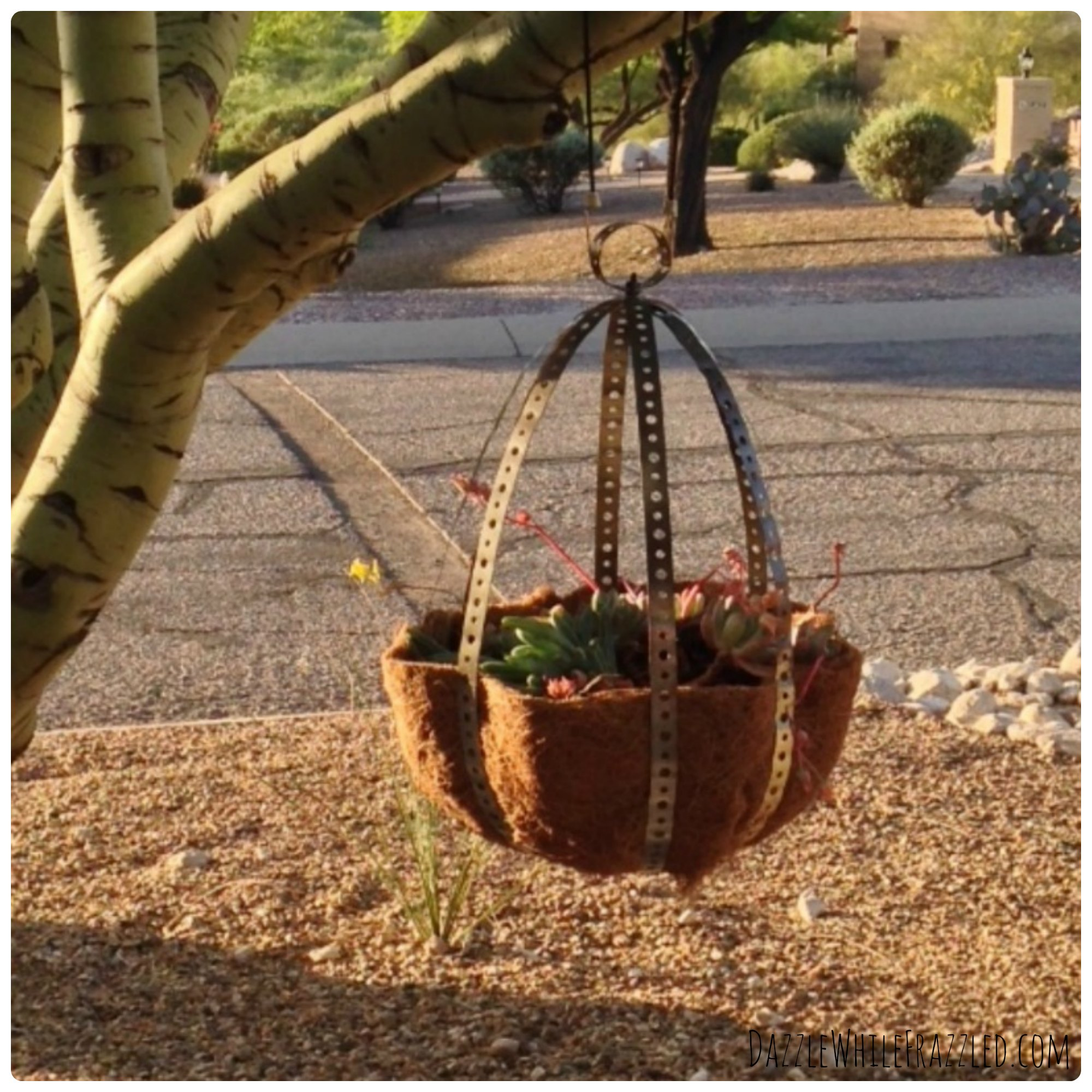 How to make your own hanging planter   DazzleWhileFrazzled.com