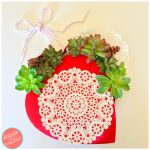 DIY Succulent Valentine's Day Wreath from Chocolate Box