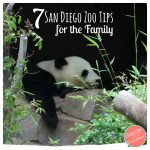 7 San Diego Zoo Tips for the Family