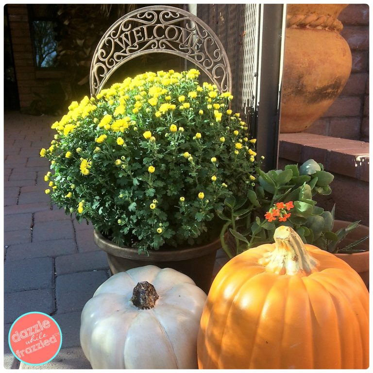 Autumn decorating ideas for front porch with pumpkins and mums.