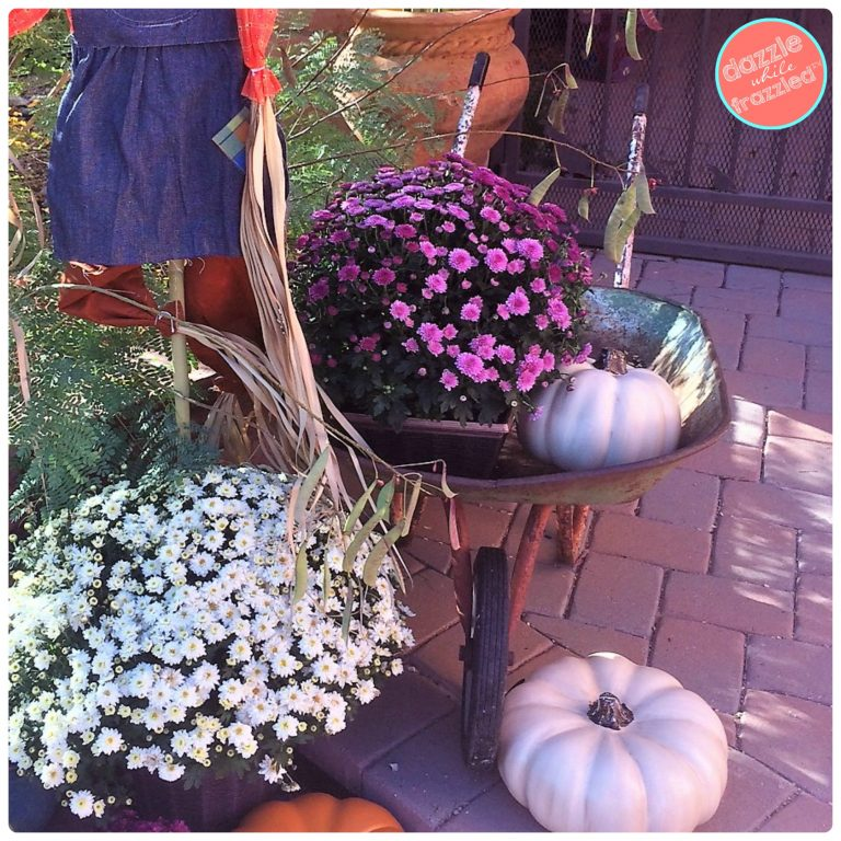 How to decorate for autumn with vintage wheelbarrow or garden cart.
